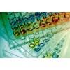 人红细胞生成素受体(EPOR)ELISA试剂盒