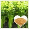 芹菜籽提取物 20:1 芹菜籽粉  香草生物