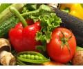 蔬菜配送专业商