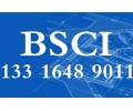 深圳可靠的BSCI验厂咨询服务服务