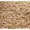 饲料厂现金常年收购小麦、玉米等饲料原料
