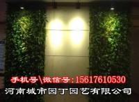 郑州餐厅植物墙制作丨有了这堵墙你才可以呼吸