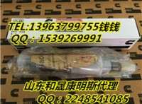 QSL品牌康明斯5263308喷油器4317230 价格
