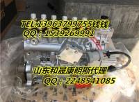 SD23康明斯NT855燃油泵4951499-20原装代理