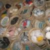 外贸陶瓷杂货 杂件外贸陶瓷地摊陶瓷批发 潮州库存外贸陶瓷