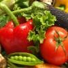 专业批发配送蔬菜——信誉好的蔬菜配送哪里有