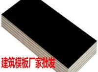 建筑模板工程专用建筑模板不劈裂不翘曲星冠木业