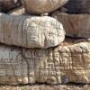 宿州龟纹石专业供应商,安徽龟纹石