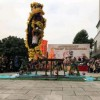传授舞龙舞狮技艺公司舞狮舞龙培训13711263978冼先生