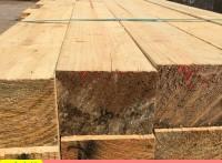 厂家直供便宜的建筑木方