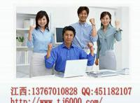 江西省专业代写项目可行性研究报告