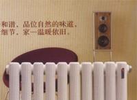 5025二柱管散热器