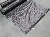 供应遮阳网 遮光网 安平遮阳网 优质遮阳网生产厂家