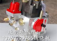 300kW发电机组KTA19-G2康明斯PT泵3899014