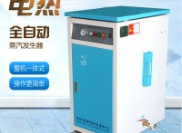 贝思特小型立式蒸饭用36KW电加热蒸汽发生器