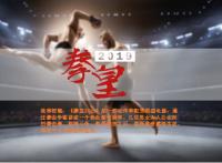 影视项目《拳皇2019》招商