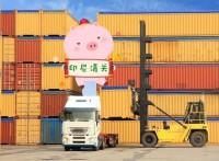 国际物流快递广州到印尼马来专线空海运双清到门业务-- 外贸