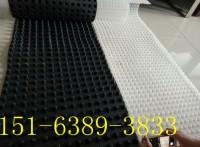 广西车库优质排水板30厚疏水板厂家凹凸过滤异形片