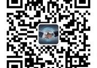 inteLB英特币系统开发