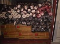 布料出口到越南海运清关货运 专业 高效