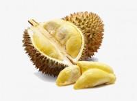 马来西亚榴莲进口清关公司推荐