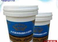 FS102滲透型混凝土表面防水劑