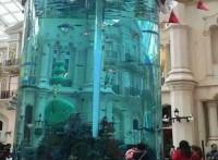 東莞魚缸設計,東莞壁掛式魚缸