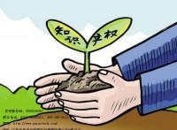 东莞金林提供税务规划服务