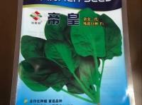 克拉玛依专注加工蔬菜种子包装袋/棉花种子包装袋,金霖包装