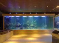 佛山魚缸訂做*佛山屏風魚缸*設計