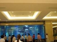 佛山魚缸訂做*佛山魚缸廠家*設計