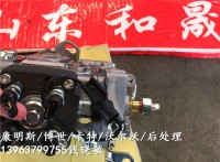 A2300直列泵燃油泵4900804上海港口設備