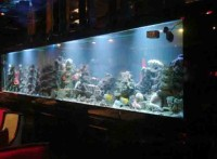 深圳*鱼缸制作*办公室鱼缸价格