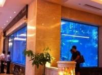 深圳*屏风鱼缸*大型鱼缸公司