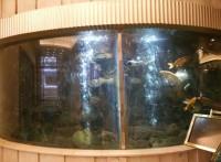 深圳*鱼缸设计*壁挂式鱼缸公司