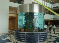 深圳*海水珊瑚鱼缸*鱼缸设计品牌