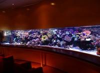深圳*超白玻璃魚缸*上門定做魚缸公司