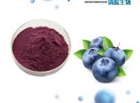 SC认证厂家 蓝莓果粉 现货销售