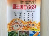 遷安市金霖塑料包裝制品有限公司/專業生產玉米種子包裝袋