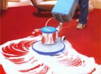 南沙区大岗镇地毯去污渍方法上门洗地毯公司专业地毯清洗消毒