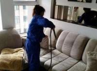 天河沙太南床垫沙发除螨专业除螨公司彻底上门消除螨虫