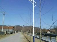 陕西国亮节能环保太阳能路灯