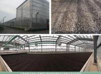 太阳能污泥烘干制陶粒温室系统