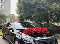 豪车婚车租赁 上海豪车租赁我x你xx网电话是多少