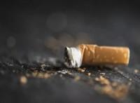 怎么样采集烟头样本做亲子鉴定?