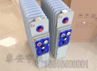 矿用隔爆兼增安型电热取暖器RB-2000/127(A)