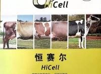 奶牛酵母改善瘤胃环境提高采食量