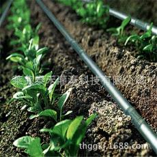 山东滴灌管厂家特价直销农业园林绿地灌溉滴灌管内镶圆柱式滴灌管