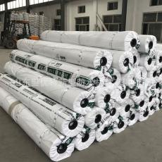 双面聚氯乙烯防水卷材建筑装修 PVC防水卷材 PVC高分子防水材料
