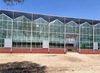 厂家供应生态温室,花卉市场温室,玻璃智能温室,辉腾温室